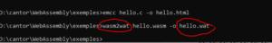 Hello conversion binaire vers texte Wasm